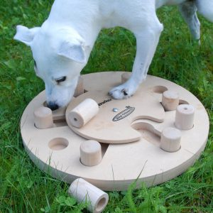 DogWorker_Bizzy